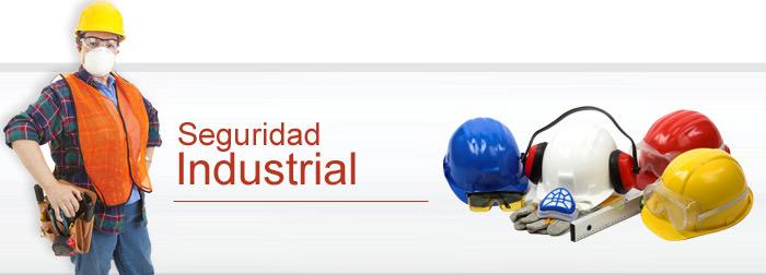 c_seguridad_industrial